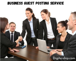 Business Guest Posting Service